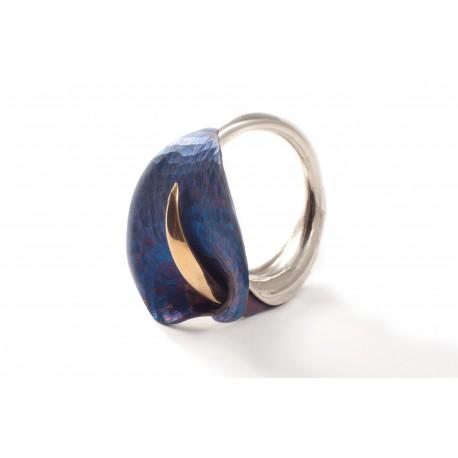 Sidabrinis žiedas su titanu ir auksuotu žalvariu