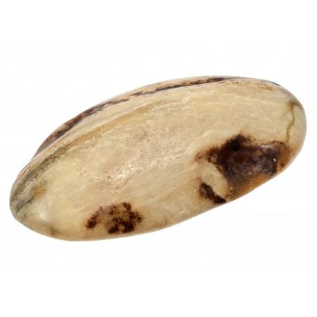 Baltojo gintaro gabalėlis