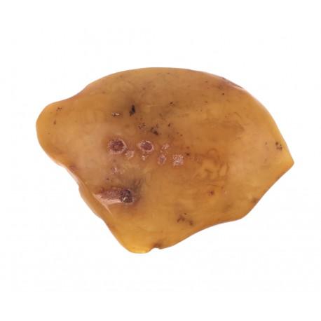 Senovinis geltono gintaro gabalėlis